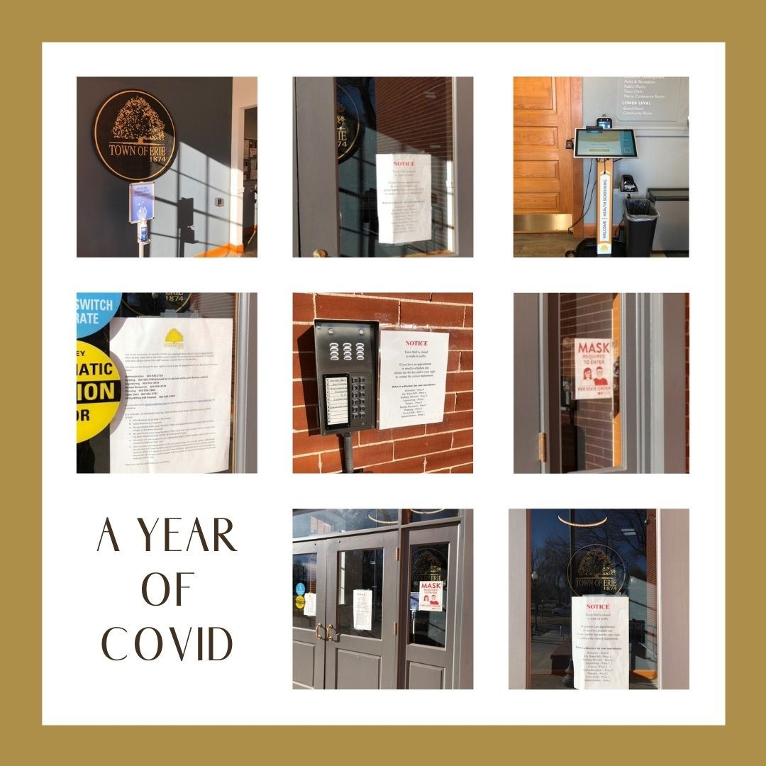 A Year of Covid