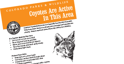 CoyoteSign_1